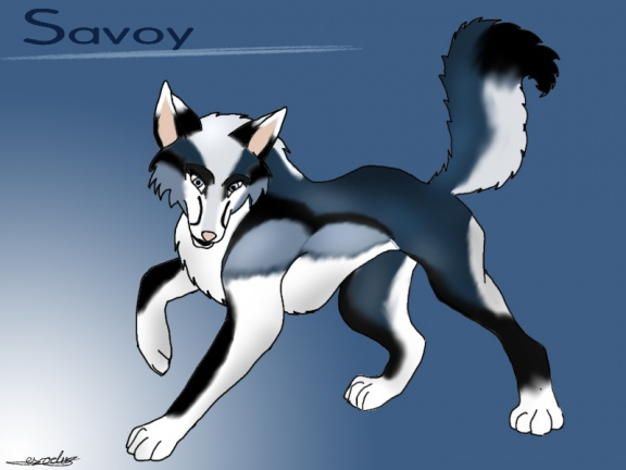 Savoy by Exodus 1161