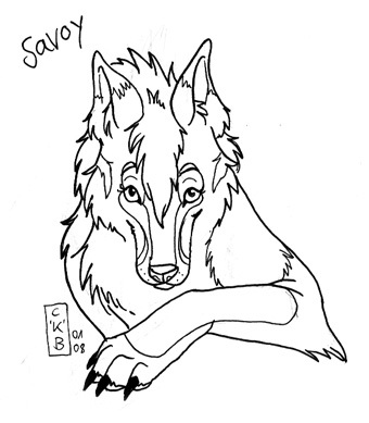 Savoy by Katara Sketch