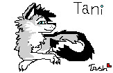 Tani by Runningwolfsoul